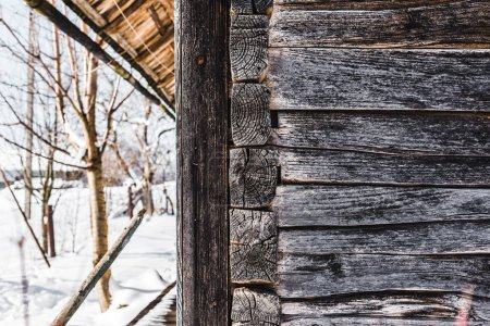 Photo for Old weathered wooden house and trees with snow at daytime - Royalty Free Image