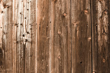 Photo for Brown weathered textured  wooden planks with copy space - Royalty Free Image