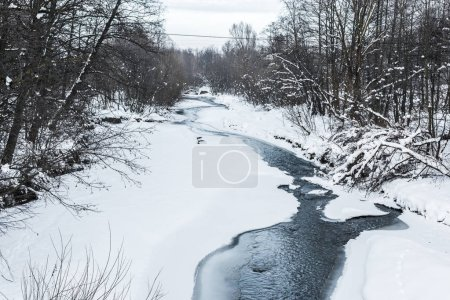 Photo for Cold creek in winter forest with trees on shores - Royalty Free Image