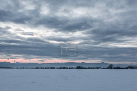 Photo for Landscape of carpathian mountains covered with snow with cloudy sky and trees at dawn - Royalty Free Image