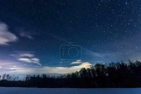 Photo for Starry dark sky with sprucesin carpathian mountains at night in winter - Royalty Free Image