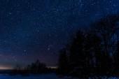 """Постер, картина, фотообои """"темное звездное небо и деревья в Карпатах ночью в зимний период"""""""