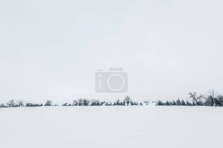 Photo for Scenic view of carpathian mountains covered with snow - Royalty Free Image