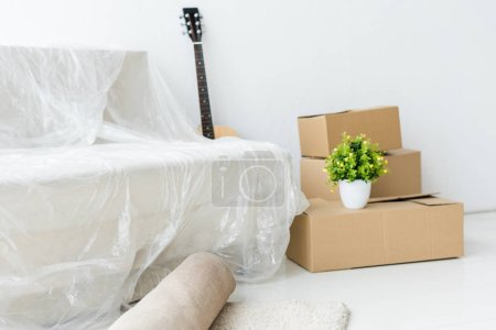 Foto de Cajas de cartón, guitarra acústica, sofá en envoltorio y planta verde en casa - Imagen libre de derechos
