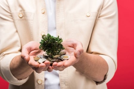 Photo pour Cropped view of man holding money tree and coins Isolated On pink - image libre de droit