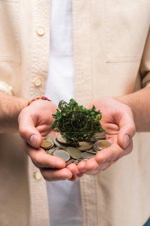 Photo pour Partial view of man holding in hands coins and money tree - image libre de droit