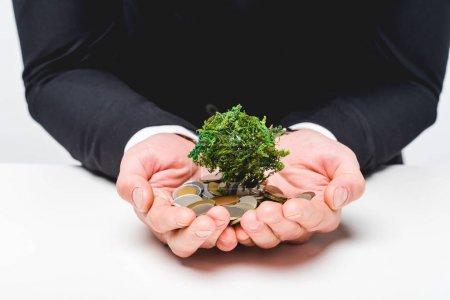 Photo pour Vue cultivée de l'homme dans le procès retenant des pièces de monnaie et l'arbre d'argent sur le gris - image libre de droit