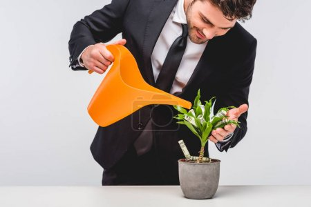 Photo pour Businessman in suit watering plant with money isolated on grey - image libre de droit