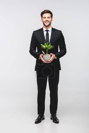 handsome businessman in suit holding flowerpot with money isolated on grey