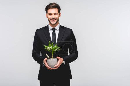 Photo for Handsome businessman in suit holding flowerpot with money isolated on grey - Royalty Free Image