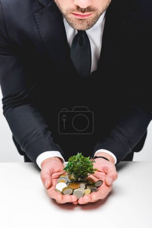 Photo pour Cropped view of man in suit holding coins and money tree - image libre de droit