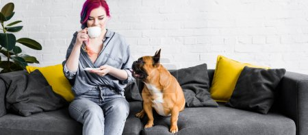 Photo for Panoramic shot of attractive girl with colorful hair sitting on sofa and drinking coffee near french bulldog - Royalty Free Image
