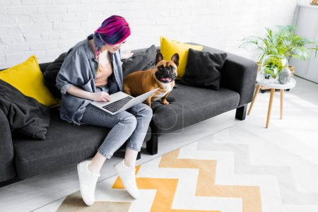 Photo for French bulldog sitting near girl with colorful hair sitting on sofa and using laptop - Royalty Free Image