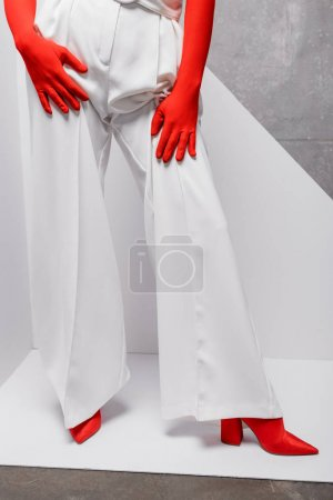 Photo for Cropped view of stylish woman posing in red gloves and shoes on white and grey - Royalty Free Image