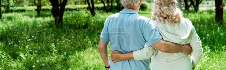 Photo for Panoramic shot of retired man hugging senior wife in green park - Royalty Free Image