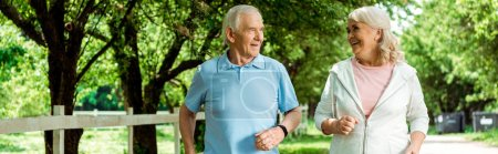 Photo for Panoramic shot of cheerful retired woman running near senior husband in park - Royalty Free Image