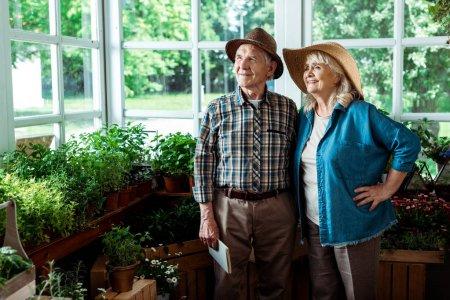 Photo pour Foyer sélectif de femme âgée heureuse debout avec la main sur la hanche près du mari - image libre de droit