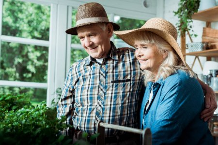 Photo pour Joyeux retraité homme et femme souriant tout en regardant les plantes vertes - image libre de droit