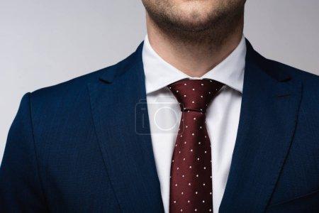Photo pour Vue recadrée de l'homme d'affaires dans le procès et la cravate d'isolement sur le gris - image libre de droit