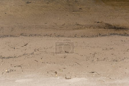 Photo for Brown textured surface with sand and water with copy space - Royalty Free Image