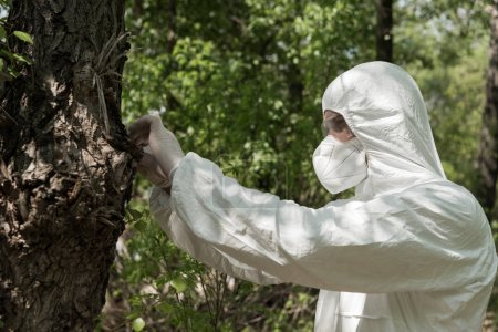Photo for Ecologist in protective costume and respirator touching tree in forest - Royalty Free Image