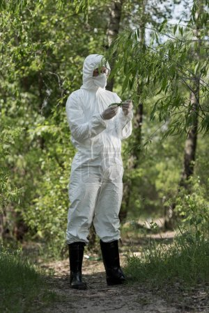 Photo for Full length view of ecologist in protective costume and respirator touching tree leaves in forest - Royalty Free Image