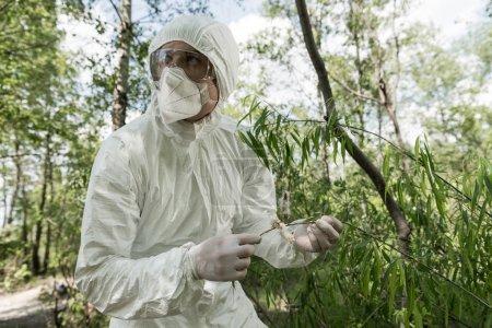 Foto de Ecologista en traje protector y respirador tocando hojas de árboles en el bosque - Imagen libre de derechos