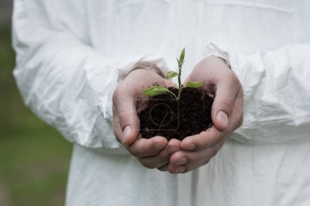 Photo for Partial view of ecologist holding handful of soil with plant - Royalty Free Image