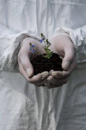 Photo for Partial view of ecologist in latex gloves holding handful of soil with dayflowers - Royalty Free Image