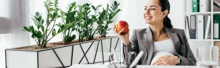 Photo for Panoramic shot of happy pregnant woman eating apple while sitting in office - Royalty Free Image