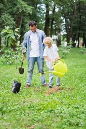 Photo pour Fils avec la boîte d'arrosage et le père avec le showel pendant planter le plant dans le stationnement - image libre de droit