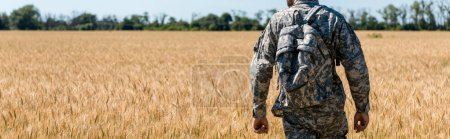 Photo for Panoramic shot of military man with backpack standing in field with wheat - Royalty Free Image