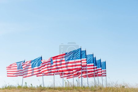 Photo for American flags on green grass against blue sky in summertime - Royalty Free Image