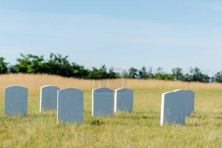 Photo pour Pierres tombales sur l'herbe verte et le ciel bleu dans le cimetière - image libre de droit