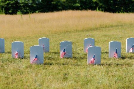 Photo pour Pierres tombales militaires sur l'herbe verte près des drapeaux américains dans le cimetière - image libre de droit