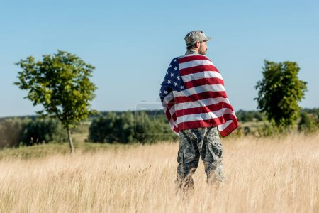 Photo for Man in camouflage uniform holding american flag in golden field with green trees - Royalty Free Image