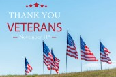 "Постер, картина, фотообои ""national american flags on green grass against blue sky with thank you veterans illustration"""
