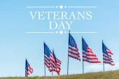 "Постер, картина, фотообои ""national american flags on green grass against blue sky with veterans day illustration"""