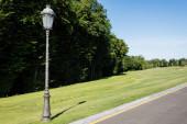 """Постер, картина, фотообои """"street lamp on green fresh grass near trees and blue sky """""""