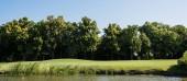 """Постер, картина, фотообои """"panoramic shot of green grass and trees near lake and blue sky """""""