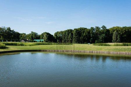 Photo pour Arbres verts près du lac contre le ciel bleu avec des nuages - image libre de droit