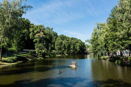 Photo pour Ombres sur étang avec de l'eau près des arbres verts dans le parc - image libre de droit