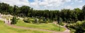 """Постер, картина, фотообои """"panoramic shot of walkway near green grass and trees in park """""""