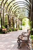 "Постер, картина, фотообои ""selective focus of wooden bench near green leaves and walkway with paving stones """