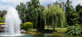 panoramic shot of fountain in pond near green trees and plants on grass