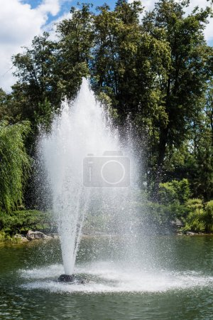 Photo pour Water splash and drops near fountain in pond near trees - image libre de droit