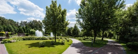 Photo for Panoramic shot of green trees on grass near fountains - Royalty Free Image