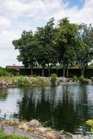 Photo pour Foyer sélectif de l'étang près des arbres et des pierres verts - image libre de droit