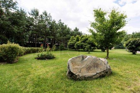 Photo pour Énorme pierre sur herbe verte et fraîche près des arbres dans le parc - image libre de droit