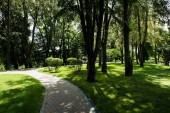 "Постер, картина, фотообои ""sunlight on path with shadows from trees and bushes in summer park """